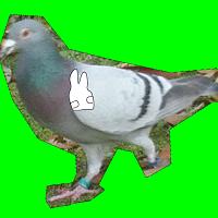 鳩がピースしてたら殴るゲーム